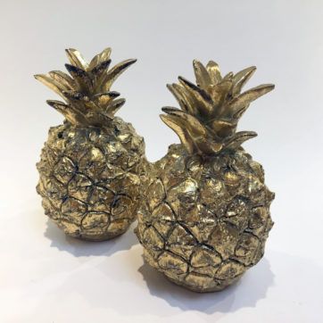 Pineapple pair