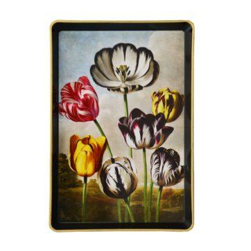 Small tulip tray